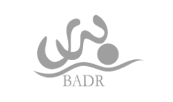 Badar Development